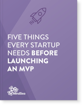 Five Things Every Startup Needs Before Launching An MVP.png
